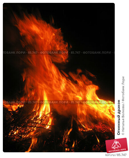 Огненный дракон, эксклюзивное фото № 85747, снято 18 августа 2007 г. (c) Наталья Волкова / Фотобанк Лори