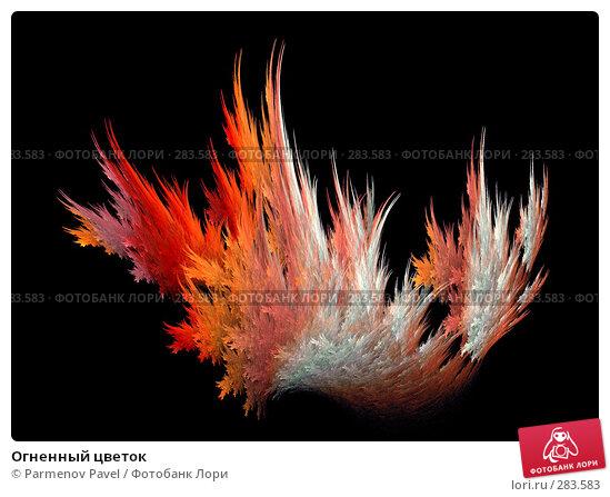 Огненный цветок, иллюстрация № 283583 (c) Parmenov Pavel / Фотобанк Лори
