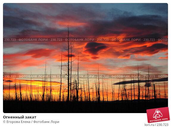 Огненный закат, фото № 230723, снято 12 августа 2005 г. (c) Егорова Елена / Фотобанк Лори