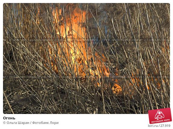 Купить «Огонь», фото № 27919, снято 28 марта 2007 г. (c) Ольга Шаран / Фотобанк Лори
