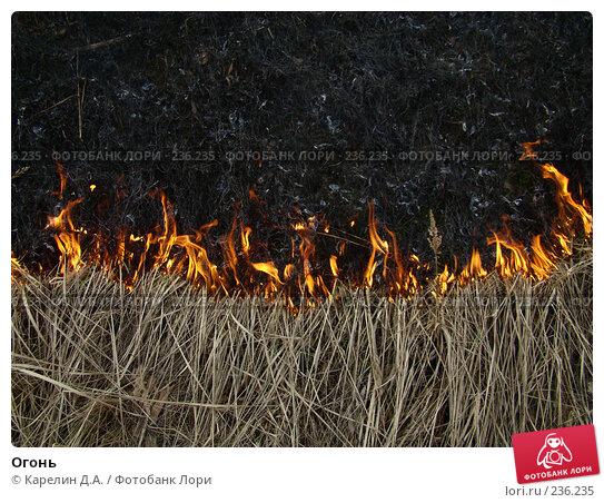 Огонь, фото № 236235, снято 29 марта 2008 г. (c) Карелин Д.А. / Фотобанк Лори