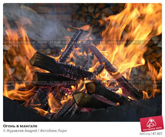 Купить «Огонь в мангале», эксклюзивное фото № 47907, снято 19 ноября 2006 г. (c) Журавлев Андрей / Фотобанк Лори