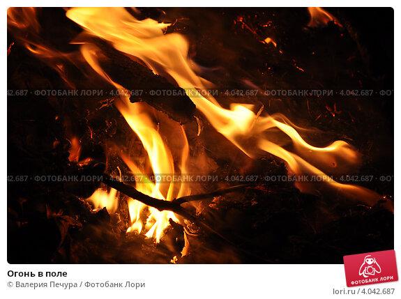 Огонь в поле. Стоковое фото, фотограф Валерия Печура / Фотобанк Лори