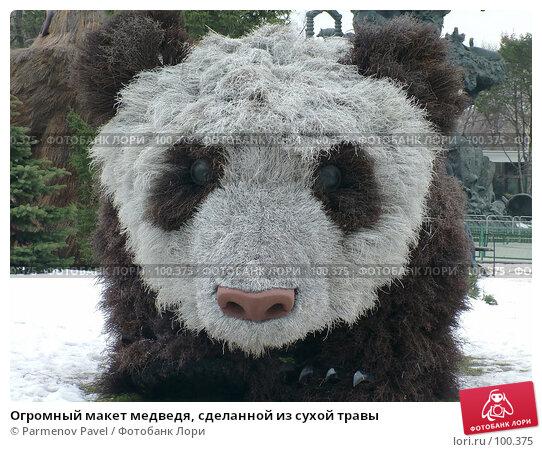 Купить «Огромный макет медведя, сделанной из сухой травы», фото № 100375, снято 9 марта 2007 г. (c) Parmenov Pavel / Фотобанк Лори