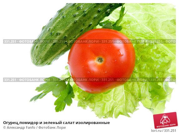 Купить «Огурец,помидор и зеленый салат изолированные», фото № 331251, снято 23 марта 2018 г. (c) Александр Fanfo / Фотобанк Лори