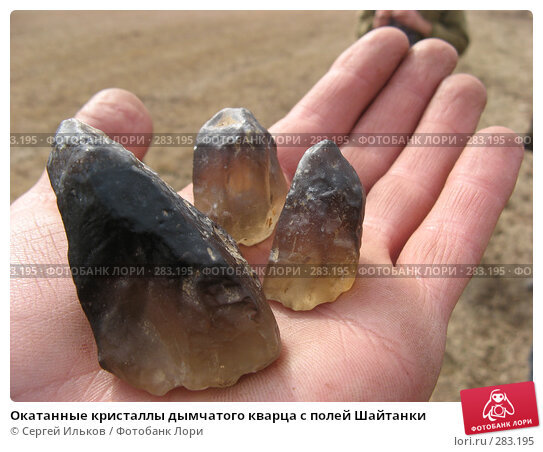 Окатанные кристаллы дымчатого кварца с полей Шайтанки, фото № 283195, снято 3 мая 2008 г. (c) Сергей Ильков / Фотобанк Лори