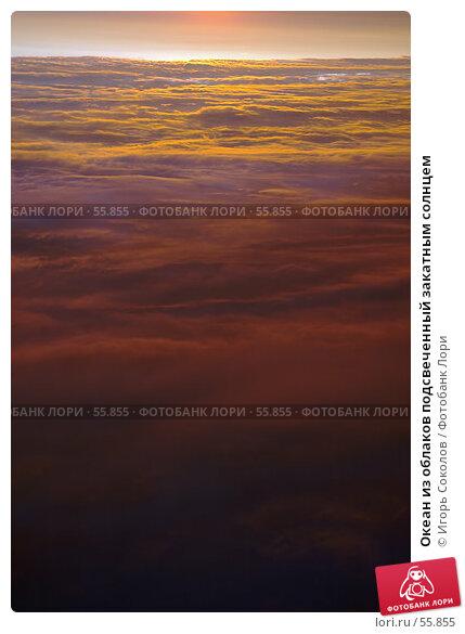 Океан из облаков подсвеченный закатным солнцем, фото № 55855, снято 29 марта 2017 г. (c) Игорь Соколов / Фотобанк Лори