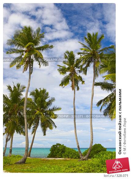 Океанский пейзаж с пальмами, фото № 328071, снято 22 августа 2017 г. (c) Михаил / Фотобанк Лори