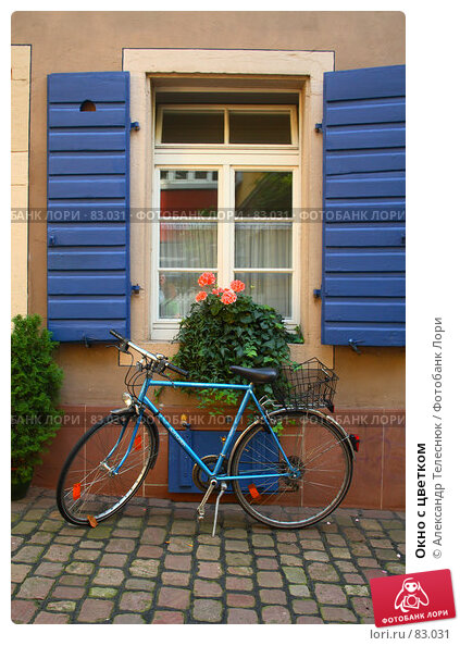 Купить «Окно с цветком», фото № 83031, снято 12 августа 2007 г. (c) Александр Телеснюк / Фотобанк Лори