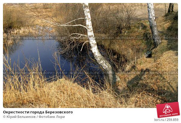 Окрестности города Березовского, фото № 259859, снято 23 апреля 2008 г. (c) Юрий Бельмесов / Фотобанк Лори