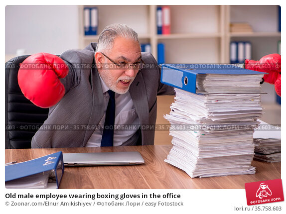 Old male employee wearing boxing gloves in the office. Стоковое фото, фотограф Zoonar.com/Elnur Amikishiyev / easy Fotostock / Фотобанк Лори