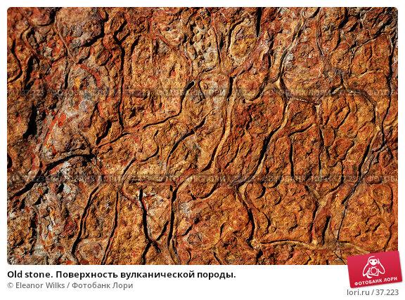 Old stone. Поверхность вулканической породы., фото № 37223, снято 24 мая 2007 г. (c) Eleanor Wilks / Фотобанк Лори