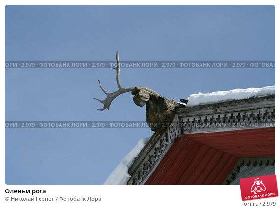 Купить «Оленьи рога», фото № 2979, снято 28 марта 2006 г. (c) Николай Гернет / Фотобанк Лори