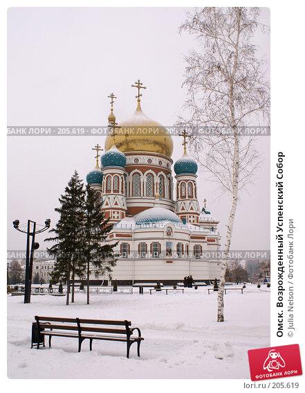 Омск. Возрожденный Успенский Собор, фото № 205619, снято 2 января 2008 г. (c) Julia Nelson / Фотобанк Лори