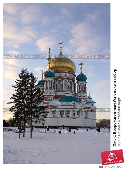 Омск. Возрожденный Успенский собор, фото № 230559, снято 8 января 2008 г. (c) Julia Nelson / Фотобанк Лори