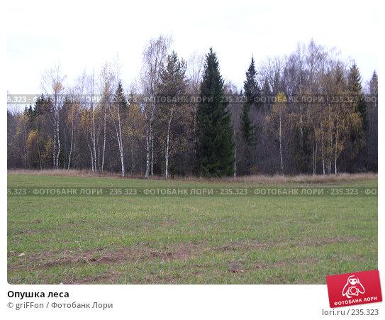 Опушка леса, фото № 235323, снято 24 октября 2004 г. (c) griFFon / Фотобанк Лори