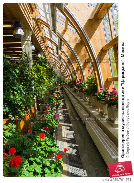 Купить «Оранжерея в музее-заповеднике Царицыно. Москва.», фото № 30761971, снято 5 мая 2018 г. (c) Сергей Рыбин / Фотобанк Лори