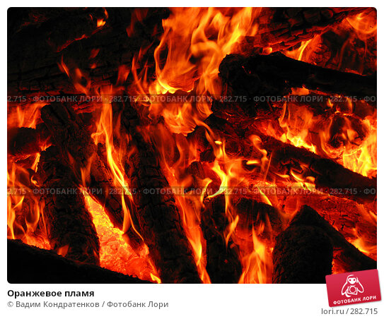 Оранжевое пламя, фото № 282715, снято 30 мая 2017 г. (c) Вадим Кондратенков / Фотобанк Лори