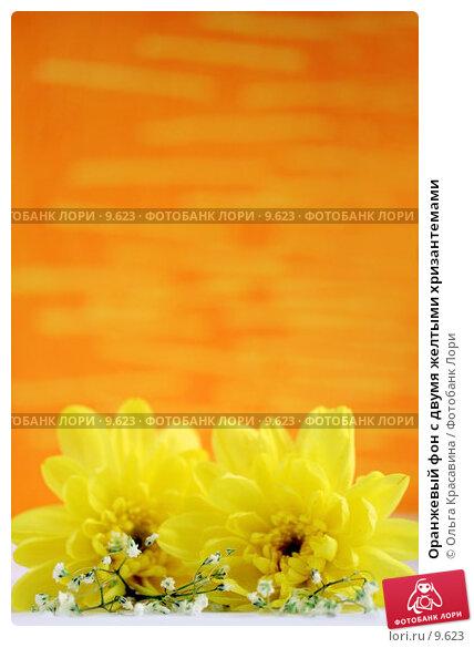 Оранжевый фон с двумя желтыми хризантемами, фото № 9623, снято 29 июня 2006 г. (c) Ольга Красавина / Фотобанк Лори