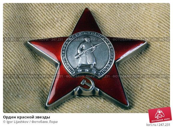 Орден красной звезды, фото № 247231, снято 10 апреля 2008 г. (c) Igor Lijashkov / Фотобанк Лори