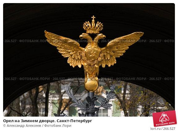 Орел на Зимнем дворце. Санкт-Петербург, эксклюзивное фото № 266527, снято 29 апреля 2008 г. (c) Александр Алексеев / Фотобанк Лори