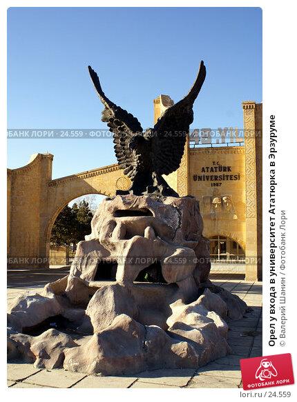 Орел у входа в университет Ататюрка в Эрзуруме, фото № 24559, снято 3 декабря 2006 г. (c) Валерий Шанин / Фотобанк Лори