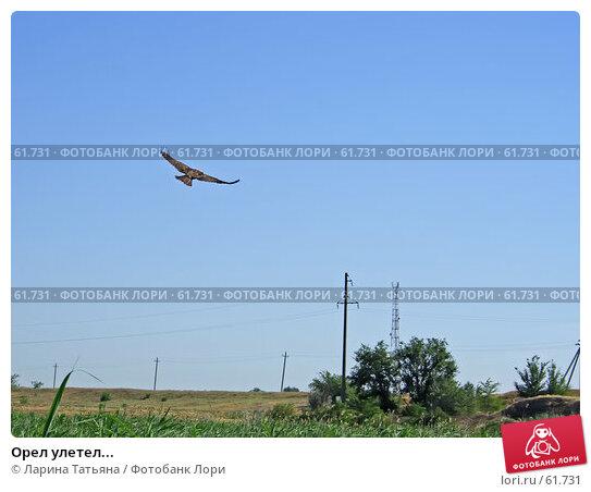 Орел улетел..., фото № 61731, снято 1 июля 2007 г. (c) Ларина Татьяна / Фотобанк Лори