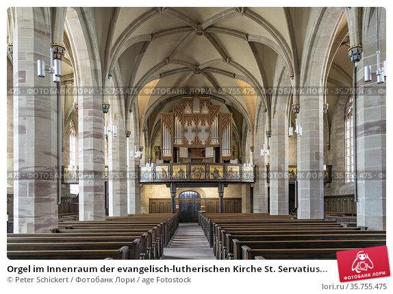 Orgel im Innenraum der evangelisch-lutherischen Kirche St. Servatius... Стоковое фото, фотограф Peter Schickert / age Fotostock / Фотобанк Лори