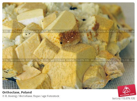 Купить «Orthoclase, Poland», фото № 15079135, снято 28 июля 2014 г. (c) age Fotostock / Фотобанк Лори