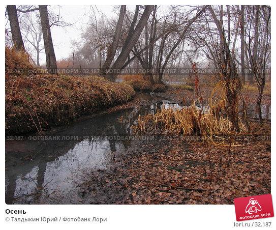 Купить «Осень», фото № 32187, снято 5 ноября 2006 г. (c) Талдыкин Юрий / Фотобанк Лори