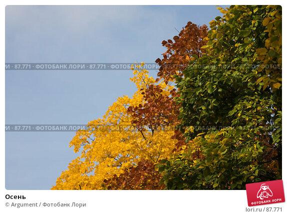 Осень, фото № 87771, снято 24 сентября 2007 г. (c) Argument / Фотобанк Лори
