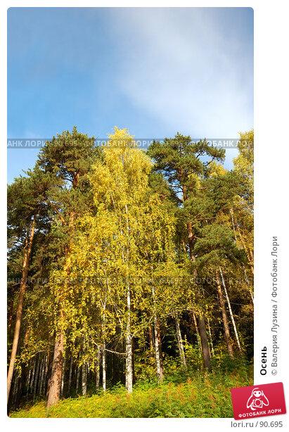Осень, фото № 90695, снято 22 сентября 2007 г. (c) Валерия Потапова / Фотобанк Лори