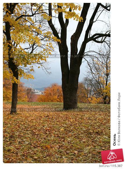 Осень, фото № 115387, снято 22 октября 2007 г. (c) Юля Волкова / Фотобанк Лори