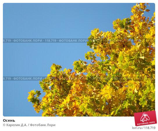 Осень, фото № 118719, снято 26 сентября 2007 г. (c) Карелин Д.А. / Фотобанк Лори