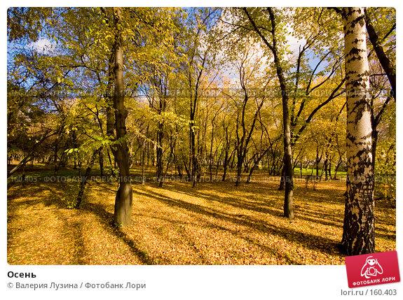 Осень, фото № 160403, снято 2 октября 2007 г. (c) Валерия Потапова / Фотобанк Лори