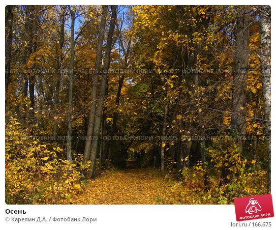 Купить «Осень», фото № 166675, снято 8 октября 2006 г. (c) Карелин Д.А. / Фотобанк Лори