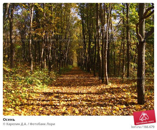Осень, фото № 166679, снято 8 октября 2006 г. (c) Карелин Д.А. / Фотобанк Лори