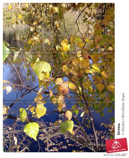 Осень, фото № 216687, снято 20 января 2017 г. (c) ElenArt / Фотобанк Лори