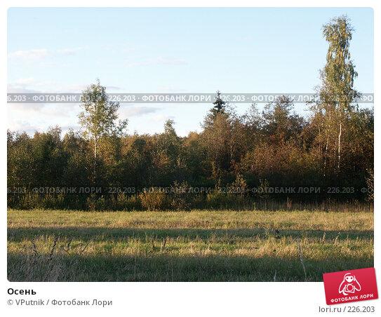 Осень, фото № 226203, снято 11 сентября 2005 г. (c) VPutnik / Фотобанк Лори