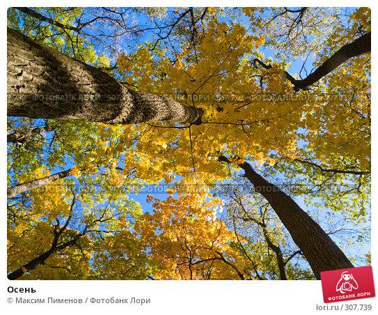 Осень, фото № 307739, снято 7 октября 2007 г. (c) Максим Пименов / Фотобанк Лори