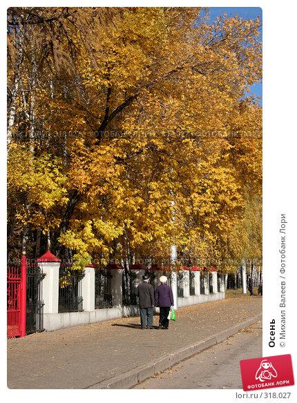 Купить «Осень», фото № 318027, снято 13 октября 2007 г. (c) Михаил Валеев / Фотобанк Лори