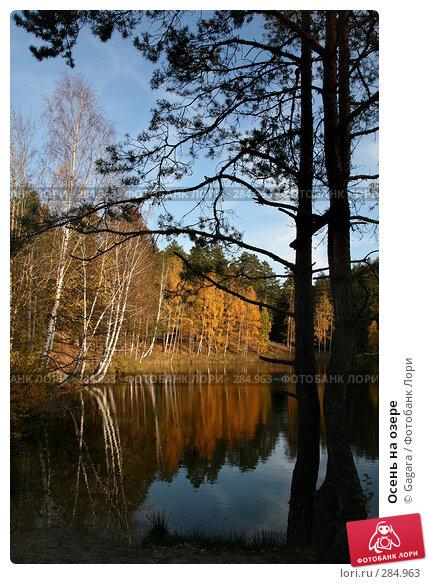 Купить «Осень на озере», эксклюзивное фото № 284963, снято 7 октября 2007 г. (c) Gagara / Фотобанк Лори