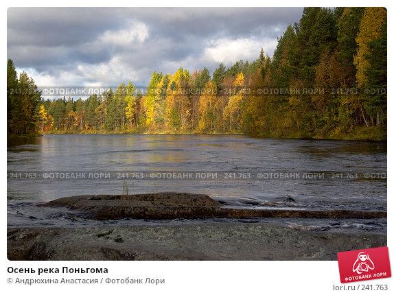 Осень река Поньгома, фото № 241763, снято 23 сентября 2007 г. (c) Андрюхина Анастасия / Фотобанк Лори