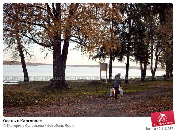 Купить «Осень в Каргополе», фото № 2118987, снято 8 октября 2010 г. (c) Екатерина Соловьева / Фотобанк Лори