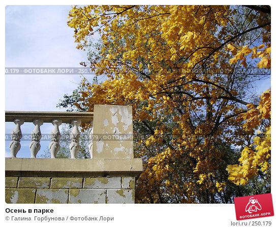 Осень в парке, фото № 250179, снято 21 октября 2006 г. (c) Галина  Горбунова / Фотобанк Лори