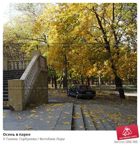 Купить «Осень в парке», фото № 250183, снято 19 апреля 2018 г. (c) Галина  Горбунова / Фотобанк Лори
