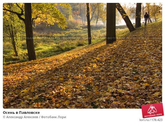 Осень в Павловске, эксклюзивное фото № 178423, снято 30 сентября 2007 г. (c) Александр Алексеев / Фотобанк Лори