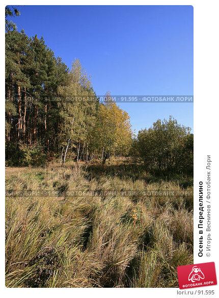 Купить «Осень в Переделкино», фото № 91595, снято 2 октября 2007 г. (c) Игорь Веснинов / Фотобанк Лори