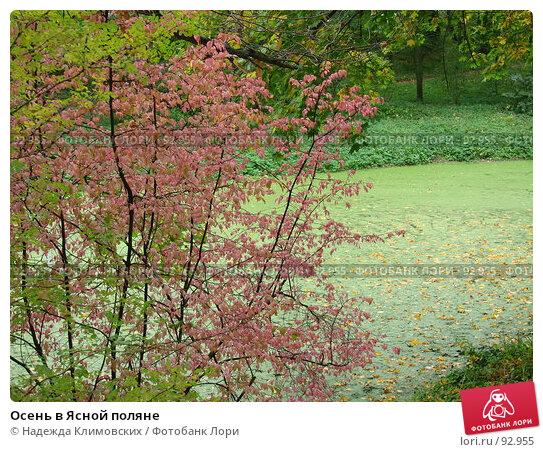Осень в Ясной поляне, фото № 92955, снято 22 сентября 2007 г. (c) Надежда Климовских / Фотобанк Лори