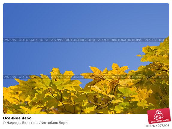 Осеннее небо, фото № 297995, снято 27 октября 2007 г. (c) Надежда Болотина / Фотобанк Лори
